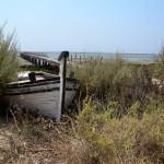 The Ria Formosa